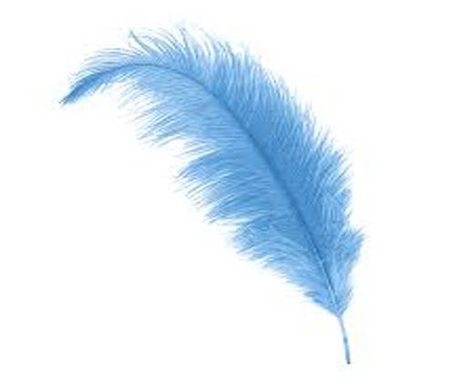 Buy Jewelry Making Supplies Fur and Feathers for Jewelry and Hats Feathers  at wholesale prices