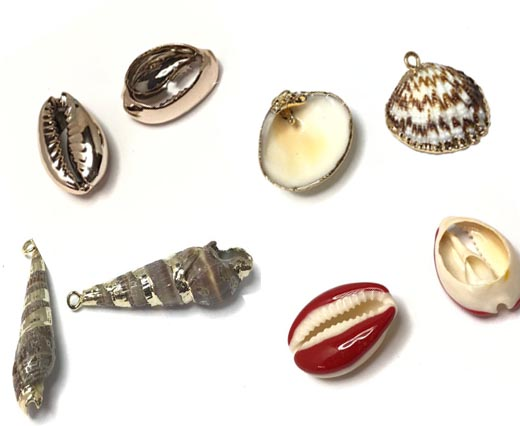 Buy Cuentas Shell Beads  at wholesale prices