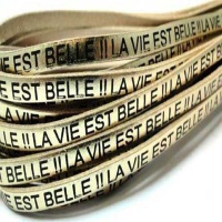 Leather With French Quotes Embossed