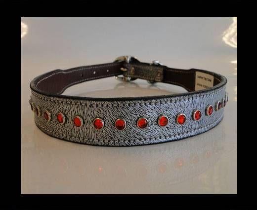 Dog Collars SE/DCB/13