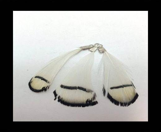 Feathers with Hooks-style 2 - colour 2