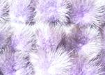 Mink Pom Pom Light Purple