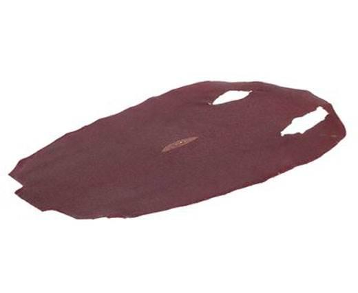 stingray-whole-skin-unpolished-ca52-x-30-cm